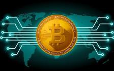 金小雅融一商学院区块链投资培训:你需要了解的数字货币投资知识