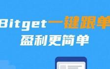 BITGET金小雅:合约一键跟单哪个平台最好