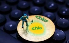 Chia金小雅:chia币1t一天挖多少币 chia币挖矿算力收益