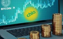 Chia金小雅:Chia矿机对存储硬件市场产生哪些影响?
